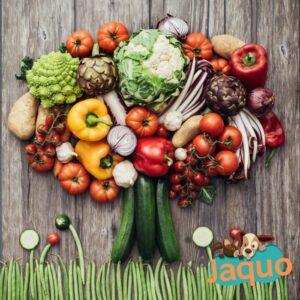 Aliment chient/chat mix Légumes, idéal pour débuter le BARF !