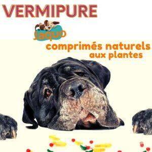 Vermifuge naturel pour Chiens grands ou costauds